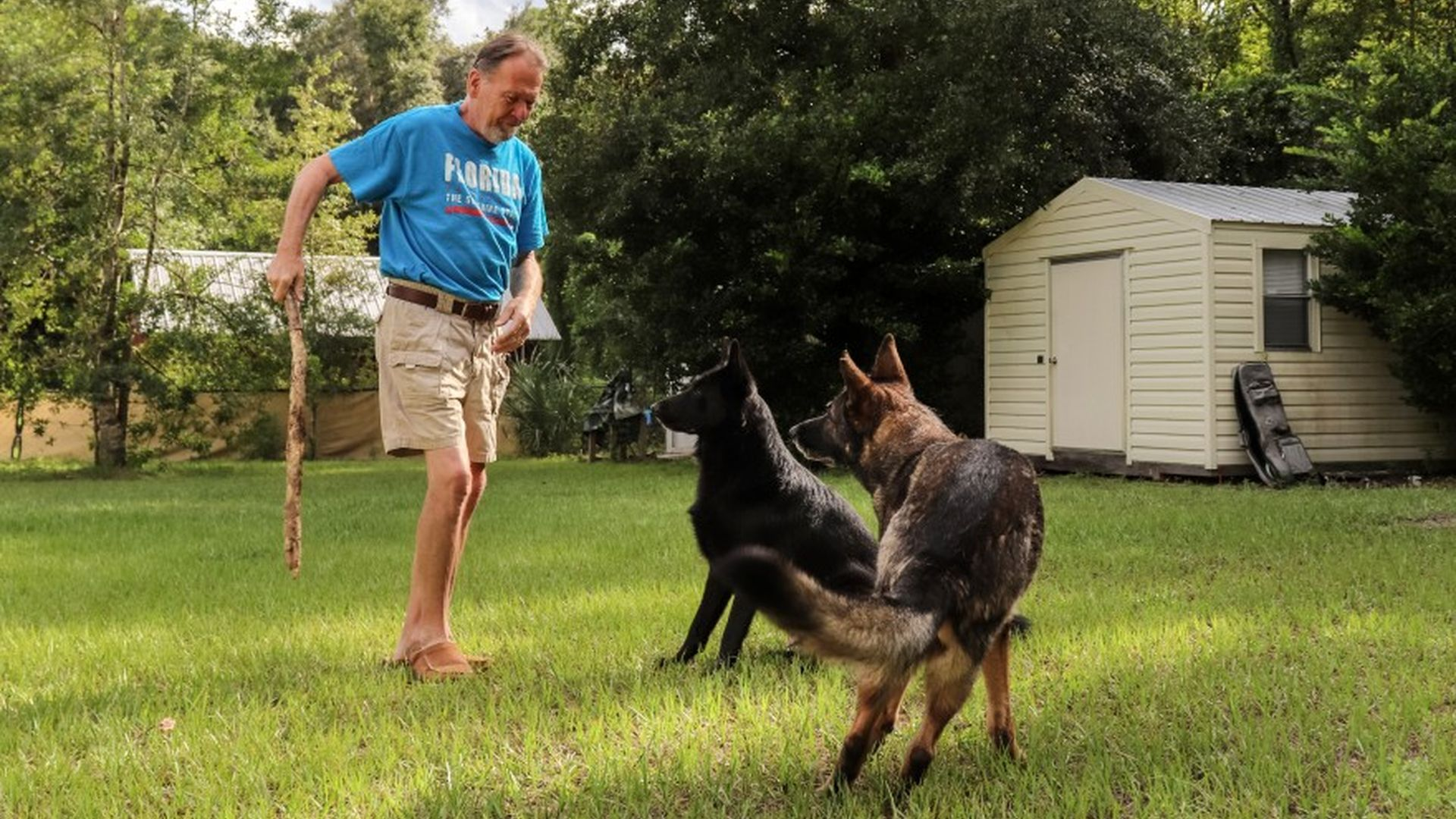 Dog Saves Owner's Life From A Sudden Stroke By Alerting The Neighbor